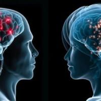 L'ESPERIMENTO CHE DIMOSTRÒ LA CONNESSIONE NEURALE E PSICHICA TRA DUE PERSONE DISTANTI TRA LORO