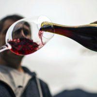 Degustare un vino stimola il cervello più della matematica